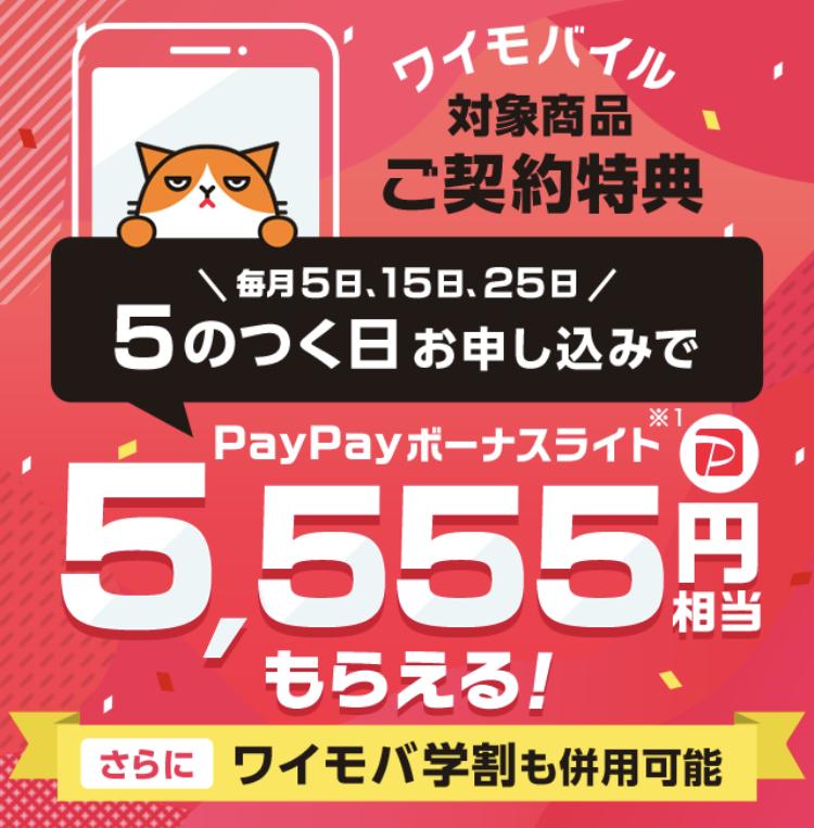 5のつく日5555円分のpaypayボーナスライト