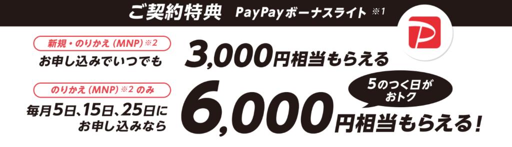 PayPayボーナスライト6000円相当