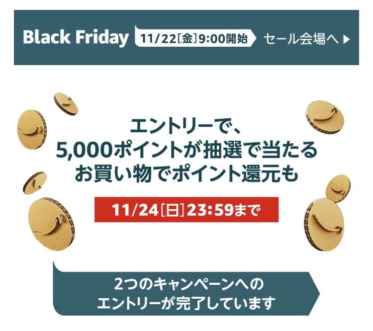 Amazonブラックフライデー ポイントアップキャンペーンのエントリー完了画面