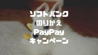 ソフトバンク のりかえPayPayキャンペーン
