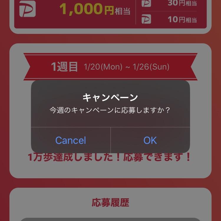 PayPayが当たるキャンペーン応募方法③