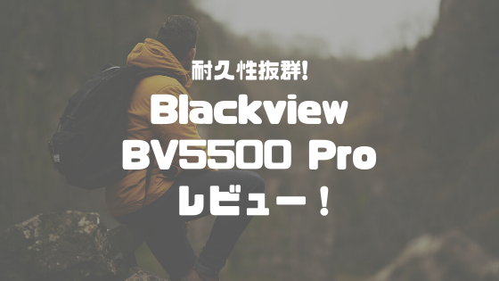 Blackvierw BV5500 PROレビュー