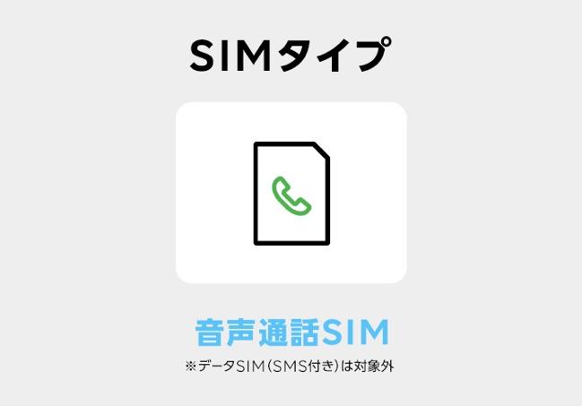 音声通話SIMのみ